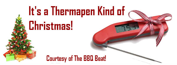 Christmas Thermapen Giveaway Lead